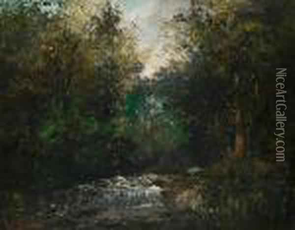 Riviere Sous Bois Oil Painting - Gustave Courbet