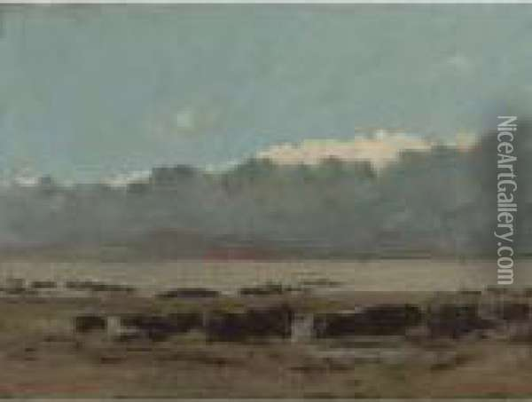 Roches Noires Oil Painting - Gustave Courbet