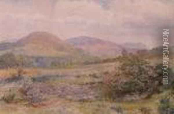The Vale Of Clwyd Oil Painting - David Cox