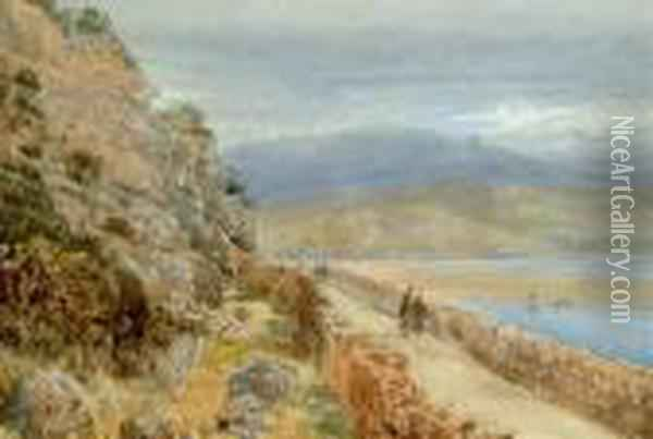 The Mawddach Estuary Oil Painting - David Cox