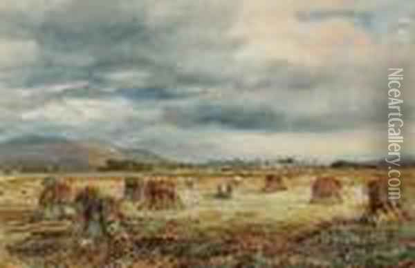 The Harvesters Oil Painting - David Cox