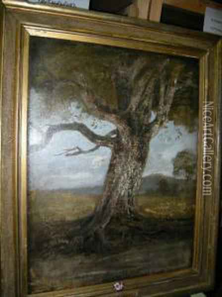 The Old Beech Oil Painting - John Crome