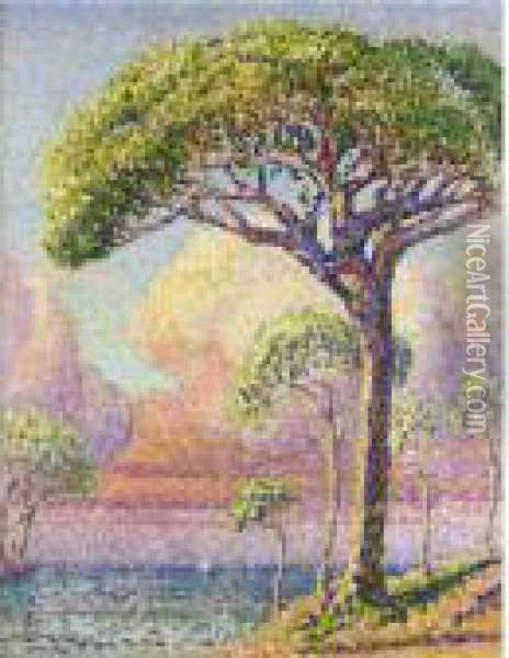 Un Pin Oil Painting - Henri Edmond Cross