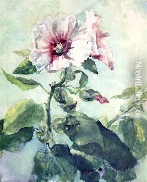 Study Of Pink Hollyhock In Sunlight From Nature Oil Painting - John La Farge