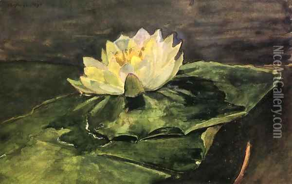 Water Lily Oil Painting - John La Farge