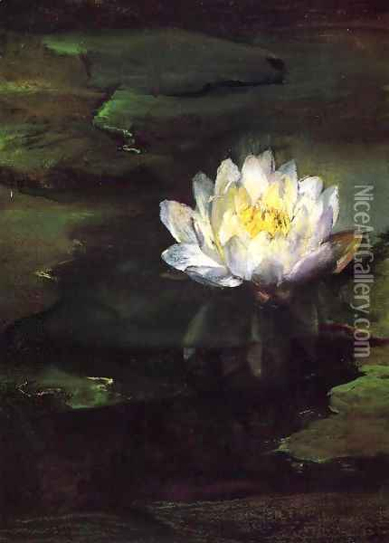 Water Lily Study From Nature Oil Painting - John La Farge