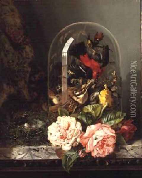 Still Life with Humming Bird in a Glass Dome Oil Painting - Edward Ladell