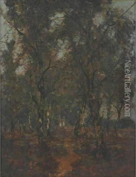 The Forest Glade Oil Painting - Theophile Emile Achille De Bock