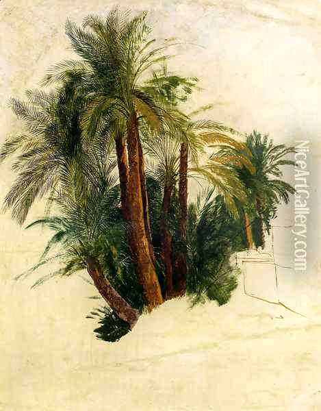 Study Of Palm Trees Oil Painting - Edward Lear
