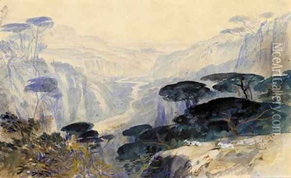 Cedars overlooking the valley, Galilea Oil Painting - Edward Lear
