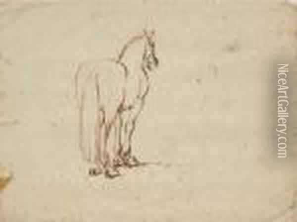 A Horse, Seen From Behind Oil Painting - Stefano della Bella