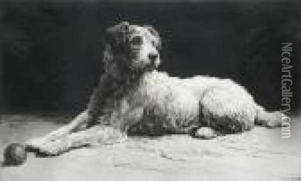 'ready', A Wire-haired Fox Terrier Oil Painting - Herbert Thomas Dicksee