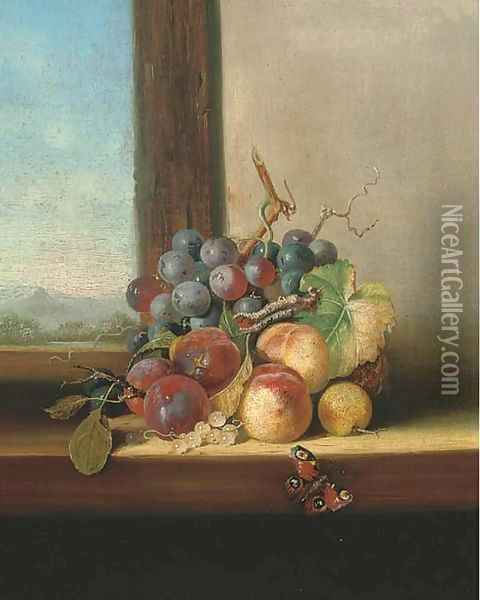 Grapes, plums, nectarines and a butterfly, on a windowsill Oil Painting - Edward Ladell