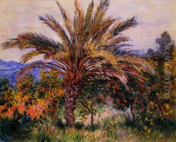 A Palm Tree At Bordighera Oil Painting - Claude Oscar Monet