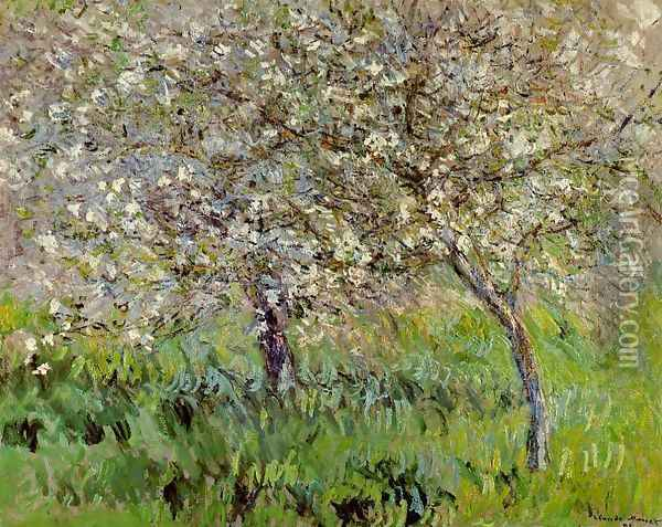 Apple Trees In Bloom At Giverny Oil Painting - Claude Oscar Monet