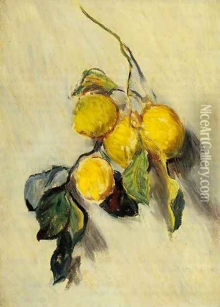 Branch Of Lemons Oil Painting - Claude Oscar Monet