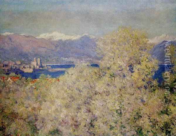 Antibes - View of the Salis Gardens Oil Painting - Claude Oscar Monet