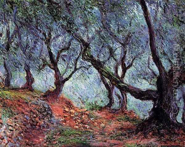 Grove Of Olive Trees In Bordighera Oil Painting - Claude Oscar Monet