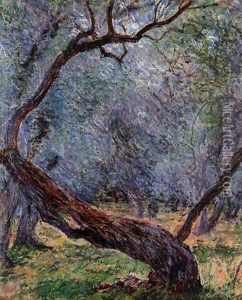 Study Of Olive Trees Oil Painting - Claude Oscar Monet