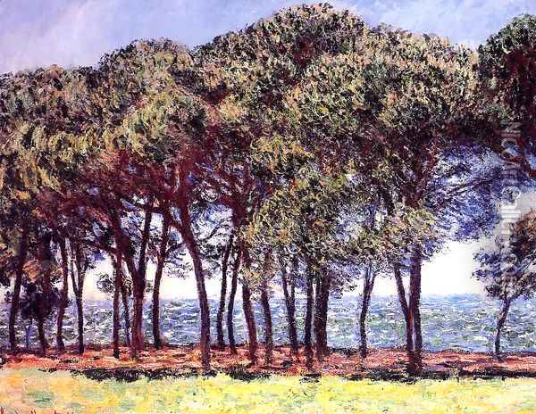 Pine Trees Cap DAntibes Oil Painting - Claude Oscar Monet