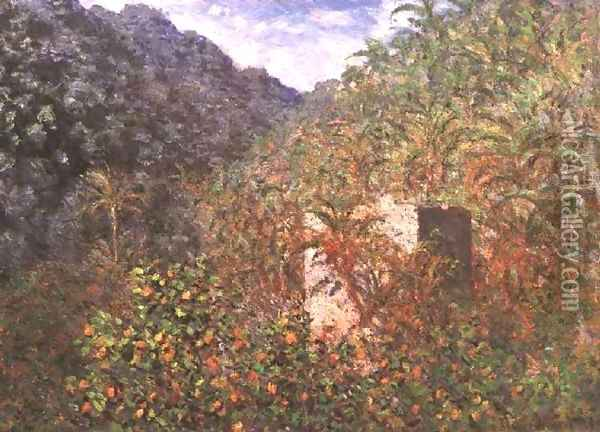 Olive Trees And Palm Trees In The Valley Oil Painting - Claude Oscar Monet