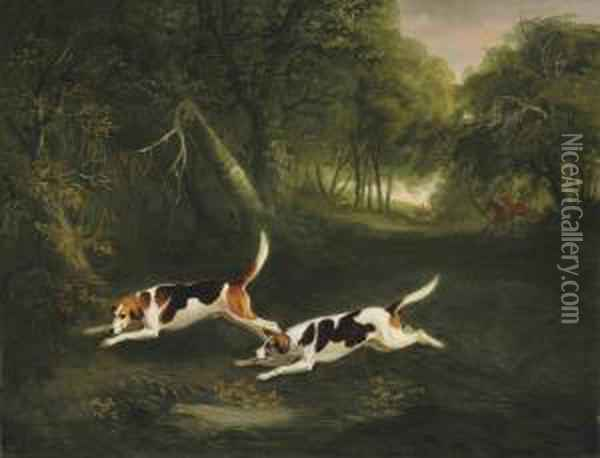 The Ormond Hounds Of The Hon. George O'callaghan Oil Painting - John Snr Ferneley