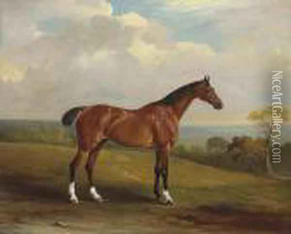 Clinker, The Bay Hunter Of H.h. Holdich-hungerford Of Dingley Park,northamptonshire Oil Painting - John Snr Ferneley