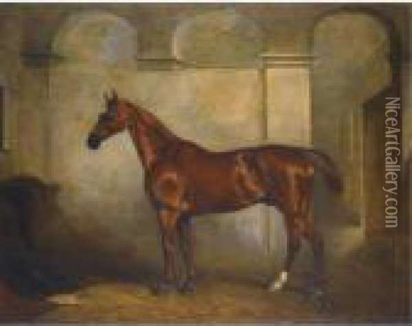 A Chestnut Horse In A Stable Oil Painting - John Snr Ferneley