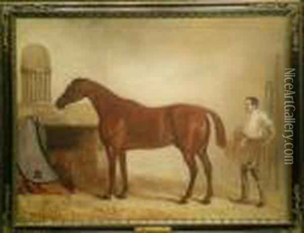 A Bay Racehorse With A Groom In A Stable Oil Painting - John Snr Ferneley