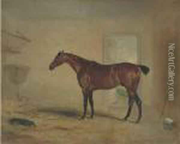 A Bay Hunter In A Stable Oil Painting - John Snr Ferneley
