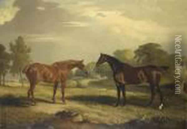 Two Hunters At Grass Oil Painting - John Snr Ferneley