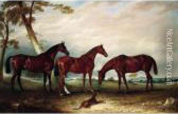 Marvel, Kingfisher And The Lad,  Three Hunters Belonging To William Angerstein, In A Field With His Dog  Spring Oil Painting - John Snr Ferneley