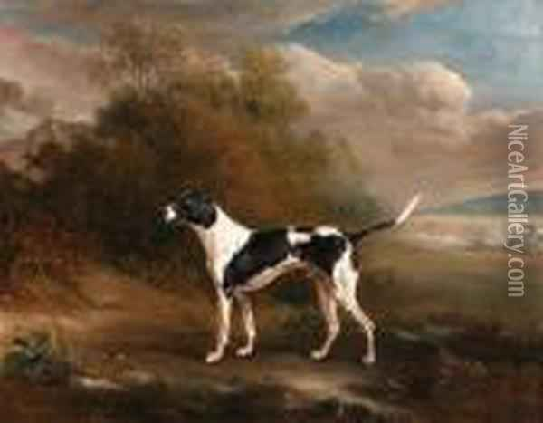A Pointer In A Landscape Oil Painting - John Snr Ferneley