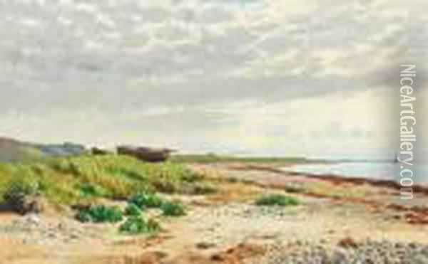 Coast At Tidsvilde In The Summer Of 1885 Oil Painting - August Fischer
