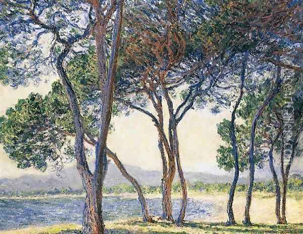 Trees By The Seashore At Antibes Oil Painting - Claude Oscar Monet