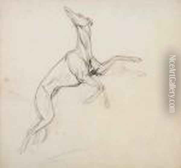 Study Of A Leaping Greyhound Oil Painting - Jean-Leon Gerome