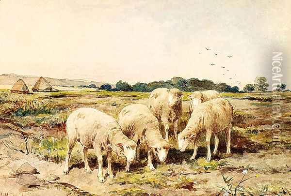 Grazing Sheep Oil Painting - Anton Mauve