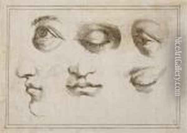Studies Of Eyes And Mouths Oil Painting - Guercino