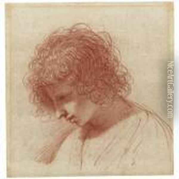 Head Of A Young Man In Profile, Looking Down To The Left Oil Painting - Guercino
