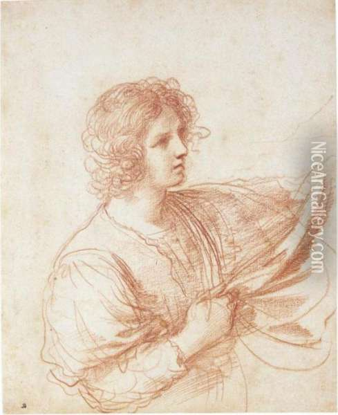 Youth Holding A Swag Of Drapery Oil Painting - Guercino