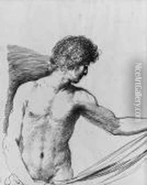 A Draped Youth Holding Some Drapery, Half-length Oil Painting - Guercino