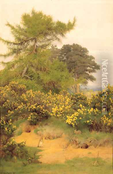 On the edge of Shere Heath Oil Painting - George Marks
