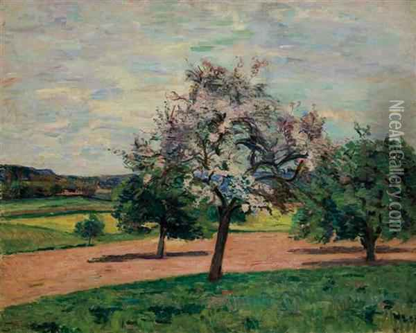 Apple Trees In Blossom Ile De France Oil Painting - Armand Guillaumin