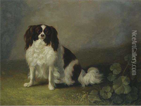 A King Charles Spaniel In A Landscape Oil Painting - Jacob Philipp Hackert
