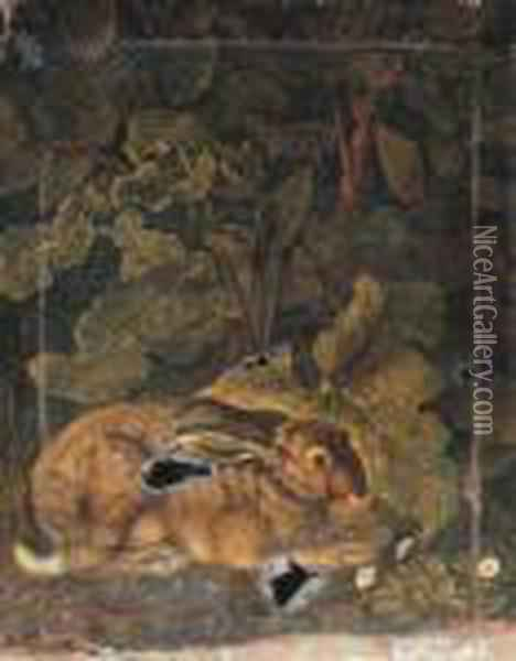 A Hare In A Forest Oil Painting - Jacob Philipp Hackert