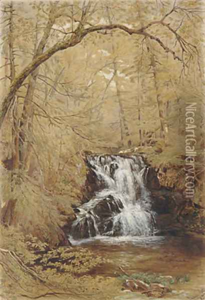 Indian Falls, Indian Brook, Cold Springs, New York Oil Painting - William Rickarby Miller