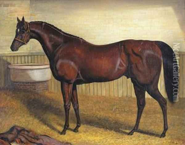 A Horse In A Stable Oil Painting - John Frederick Herring Snr