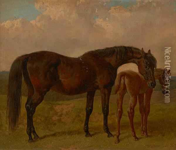 Mare And Foal In A Landscape Oil Painting - John Frederick Herring Snr