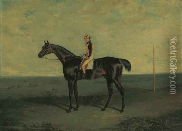 Mr Ralph Riddell's Dr Syntax With Robert Johnson Up Oil Painting - John Frederick Herring Snr