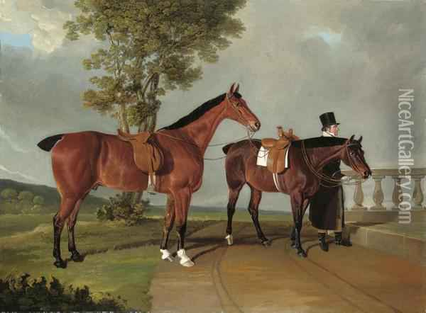 Favourite Hunters, The Property 